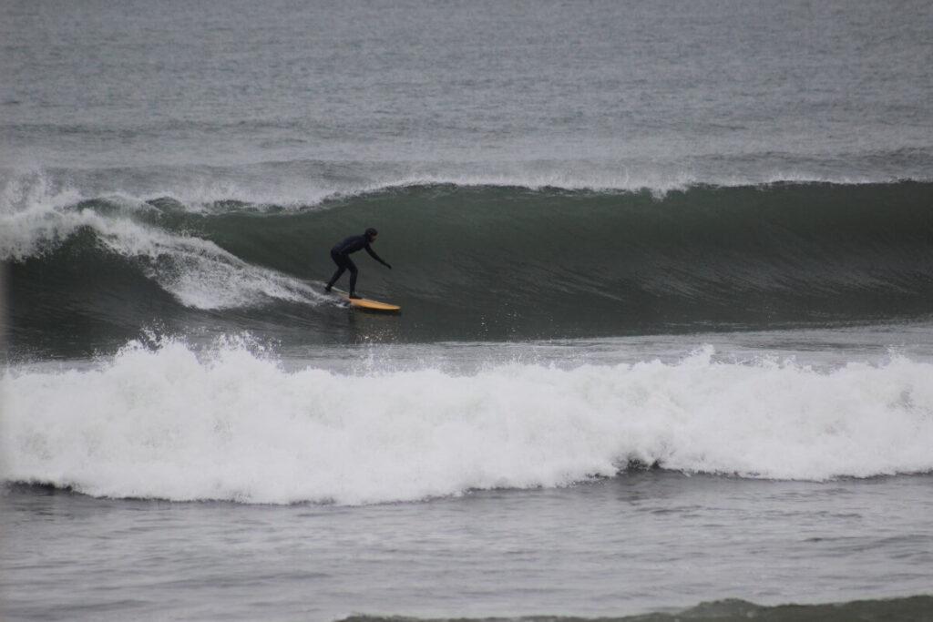 nico-surf