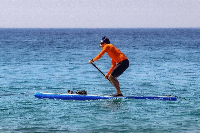 tabla paddle surf barata